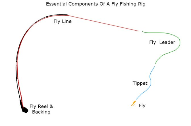 Fly fishing diagram and components of a complete fly rod
