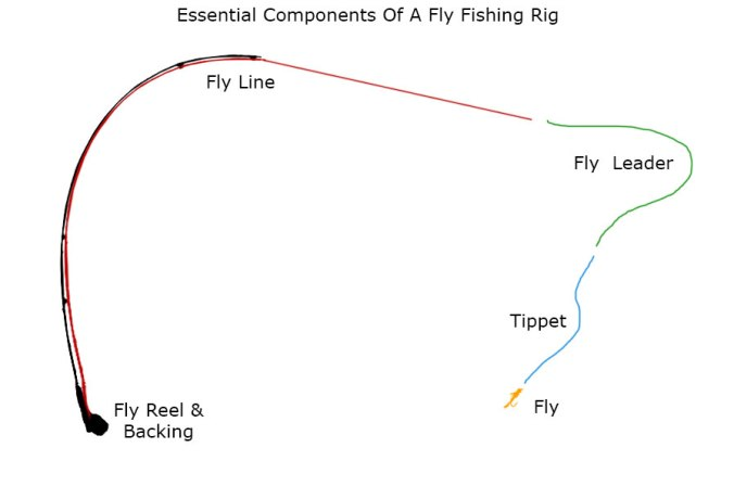 Tippets and line setup for Fishing pole setup beginners