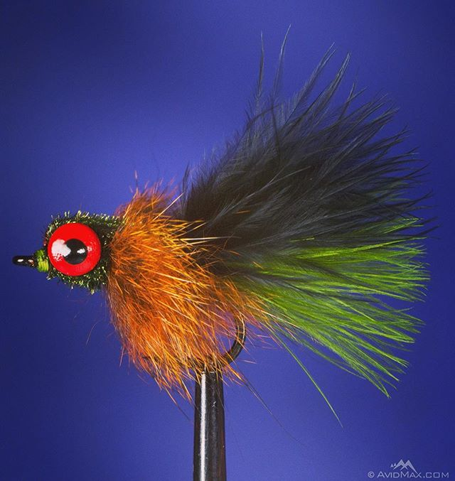 Learn to tie the Common Craw fly