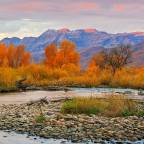 Five Reasons to Love Early Fall Fly Fishing