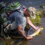 Fishpond Nomad Mid Length Net Product Review Winner