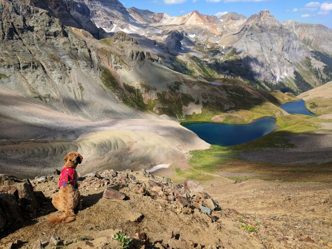 Nati looking back at the Mt. Sneffels Wilderness in Telluride Colorado