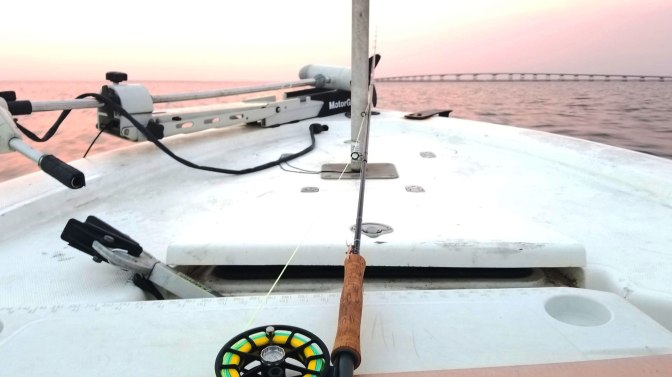 Fly fishing for Reds, off Saint George Island, and this was the 1st fish I caught on a fly.
