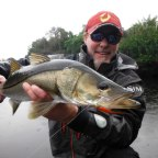 Fly Fishing For Snook In Florida Rivers