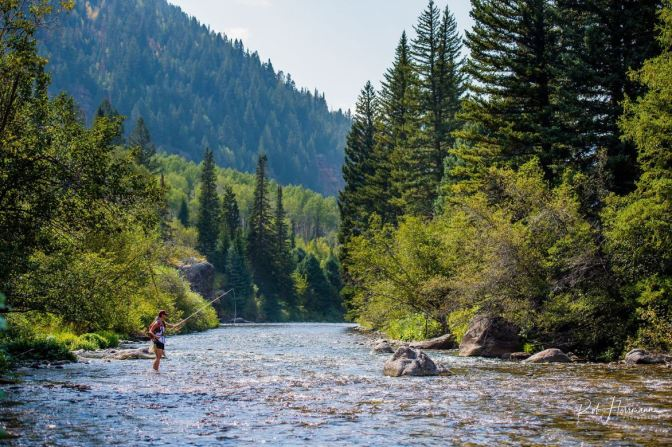 How to Choose the Right Location to Fly Fish - Freestone